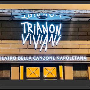 """Trianon Viviani, particolare miniabbonamento e biglietto """"under 30"""""""