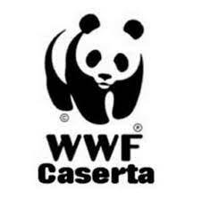 Al Liceo Manzoni importante convegno WWF Caserta sulla  sostenibilità ambientale e biodiversità